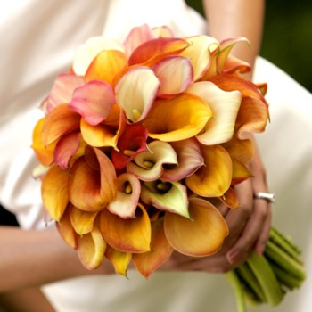 orange-yellow-white-calla-lily-bridal-bouquet