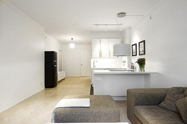 Kleine Keuken Efficient Inrichten : One Room Apartment Design